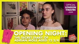 Opening night: The Secret Diary Of Adrian Mole Aged 13 3/4 The Musical