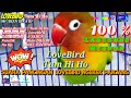 Suara Pancingan Lovebird Ngekek Panjang Love Bird Tum Hi Ho Mr Rian Dika Bf  Mp3 - Mp4 Download