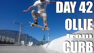 Learn skate at 43 year old : Day 42 : Ollie from Curb : DO WHAT YOU CAN'T !