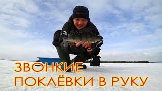 Kallavesi Звонкие поклёвки в руку Зимняя рыбалка в Финляндии 2021