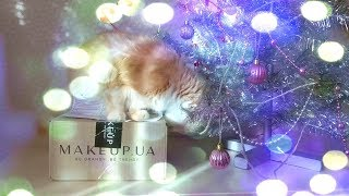 Мой заказ на сайте Makeup !!! Посылочка ко дню рождения!