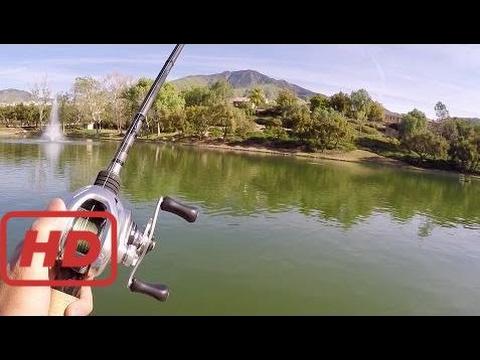[Relax Fishing]  Fishing an OASIS in the California Desert!!! (MTB 1v1 Challenge)