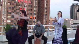 Gabriela Garza y Rafael Aragón , Flamenco y otras músicas