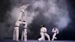 PEOPLE ARE AWESOME: TAEKWONDO EDITION 2016   Martial Arts TV