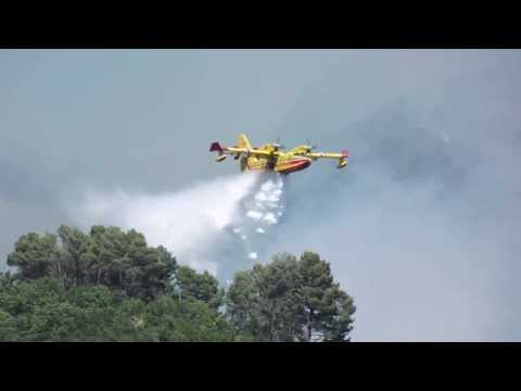 Canadair in action