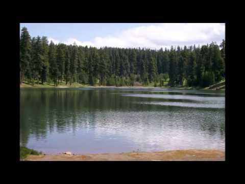 HATCHET by GARY PAULSEN - YouTube