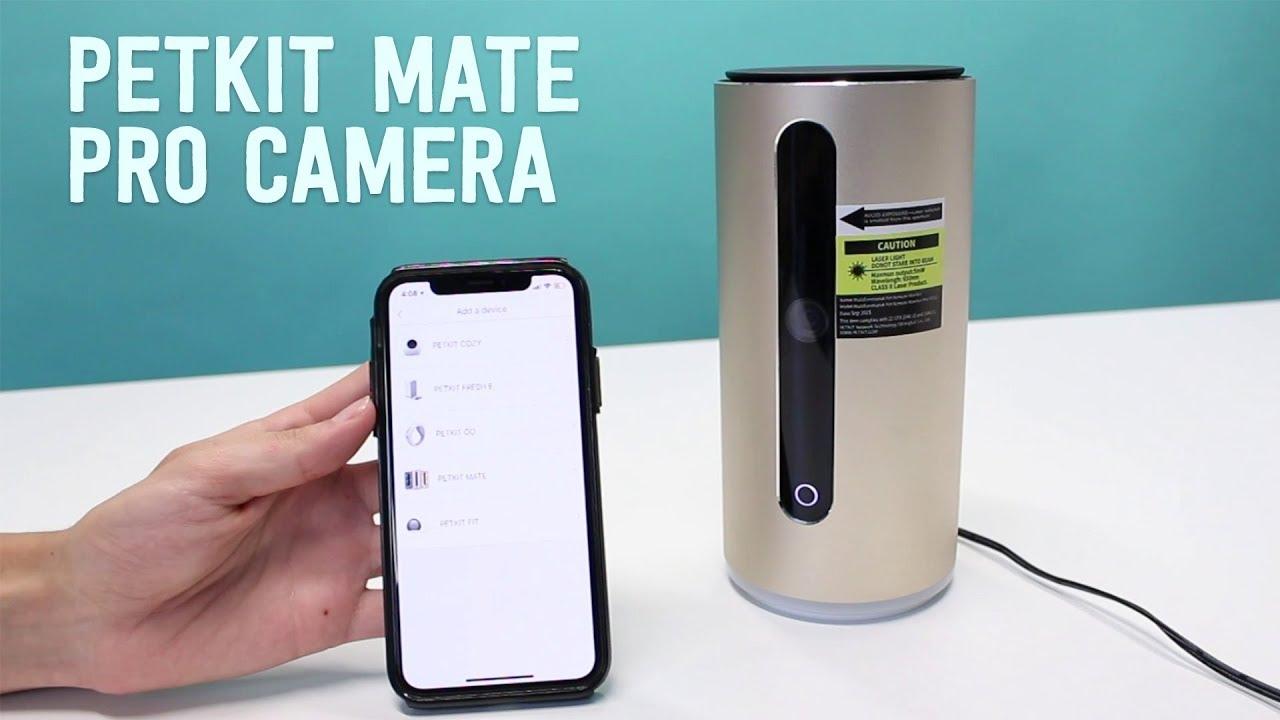 10 Best Dog Cameras UK 2019 | Complete Buyers Guide by Jug Dog