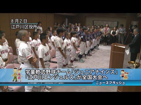 学童軟式野球チーム「ジュニアナインズ」「江戸川エンジェルズ」が全国大会へ