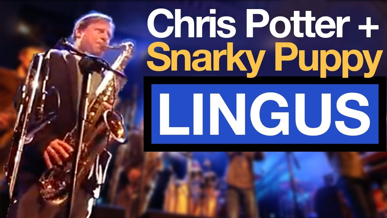 Snarky Puppy | That time CHRIS POTTER sat in with Snarky Puppy AND... // VLOG #110