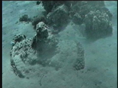 De Overtocht Door De Rode Zee. Locatie In Zee Gevonden! - De Onthulling Van Gods Schat, Deel: 3