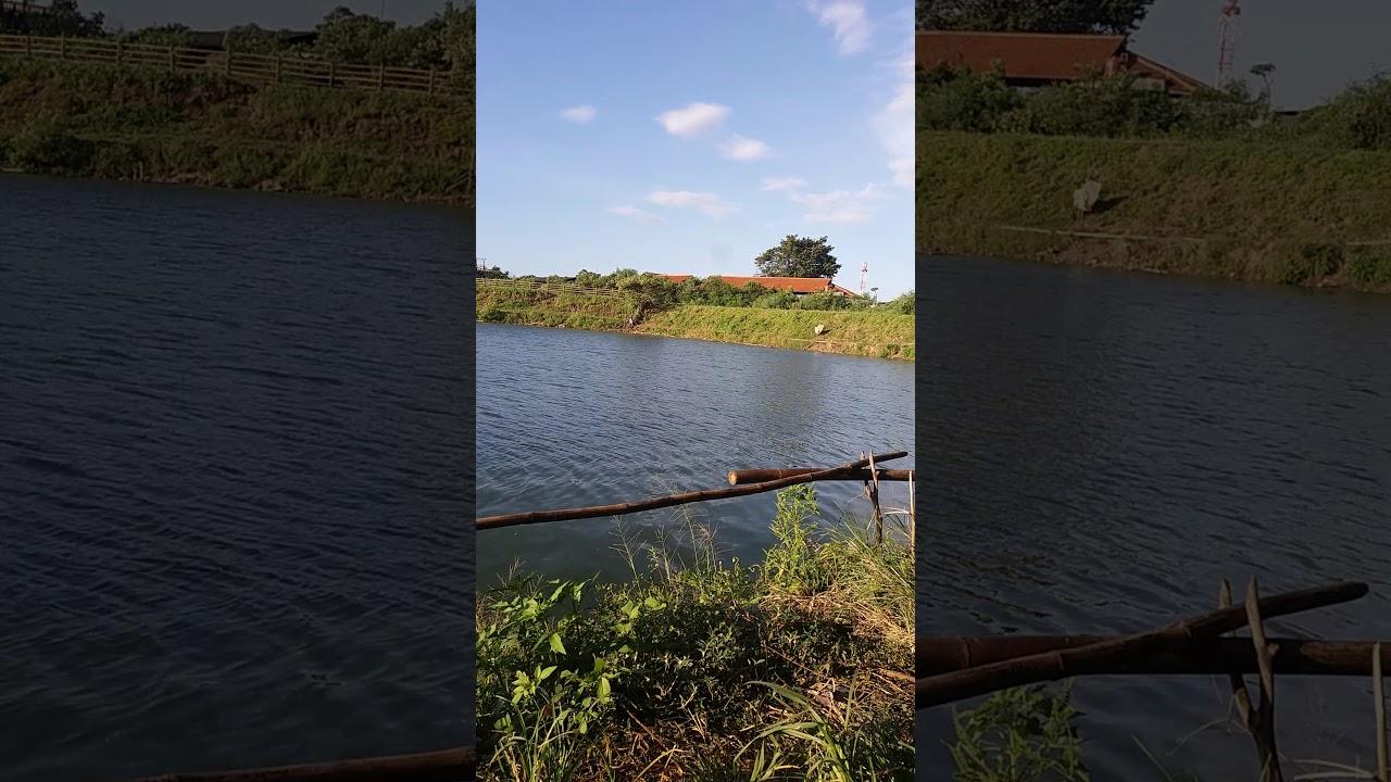 Spot Mancing Nila Di Banjarmasin