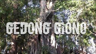 CTD Misteri Gedong Giyono Bakalan Purwantoro Wonogiri