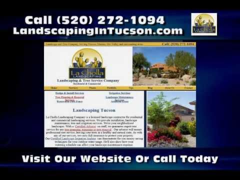 Landscaper Tucson AZ La Cholla Landscaping