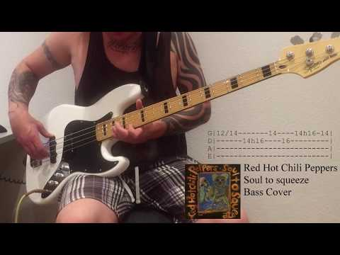 Soul to squeeze by Red hot chili peppers - Bass cover with Tabs
