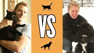 Cat Owner Life VS Dog Owner Life by : Cole and Marmalade