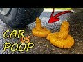 Car vs poop Crushing Crunchy & Soft Things By Car Satisfying Experiments