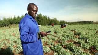 Kenya: Mobile market access