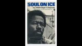 Eldridge Cleaver :Soul on Ice-On Baldwin,Blacks in Vietnam(audio bk pt 5)