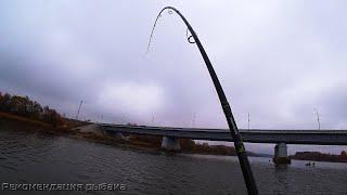 НАКОНЕЦ ТО ПОПАЛ НА ОСЕННИЙ ЖОР Рыбалка на спиннинг в ноябре 2020 Ловля щуки осенью Часть 1