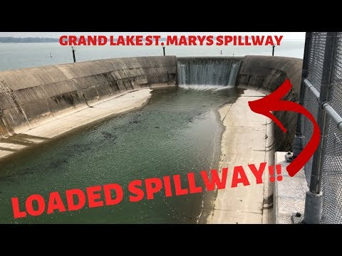 MULTI-species Fishing At A LOADED Spillway (Grand Lake St. Marys Celina, OH)