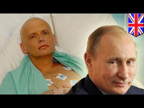 How exKGB agent Alexander Litvinenko was poisoned by a cup of green tea  Tomo