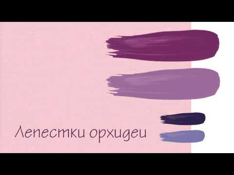 Красивые сочетания цветов. Розовые цвета