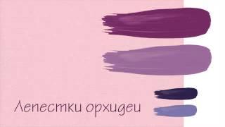 видео Розовый цвет в психологии. Цветовые предпочтения: психология