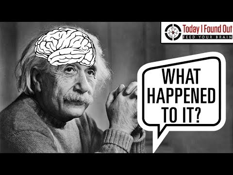 Stealing Einstein's Brain
