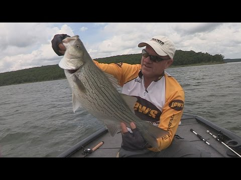 FOX Sports Outdoors SouthWEST #27 - 2016 Skiatook Lake Oklahoma Hybrid Striper Fishing