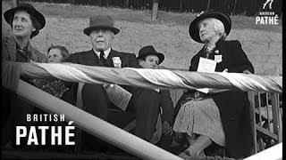 Limerick Horse Show (1940)