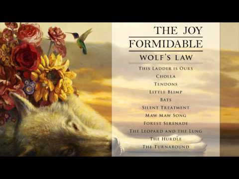 The Joy Formidable - This Ladder is Ours [Official Audio from Wolf's Law]