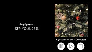 SF9 YOUNGBIN - Agitpunkt(Lyrics)