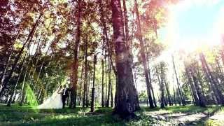 Свадьба в городе Дмитров