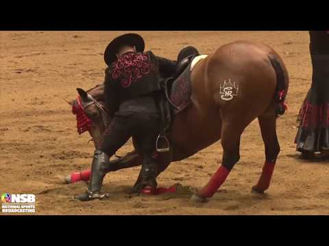 2019 Quarter Horse Congress Freestyle Reining Frederick Win on Friday Night Sailing Multicam