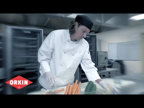 5 Common Food Safety Mistakes Orkin for Your Business