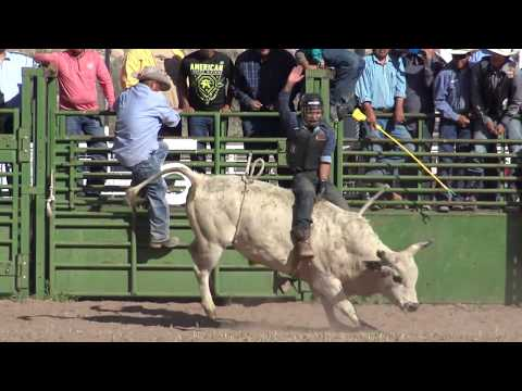 Thumbnail: Top Of The World Bull Riding