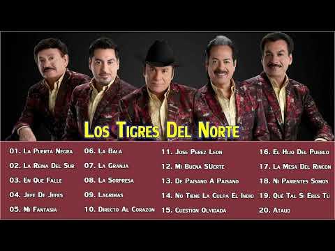 Loss Tigres Del Norte SuS Grandes Exitos || 20 Mejores Canciones De Loss Tigres Del Norte