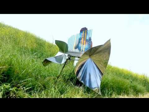 Bohemian Cristal Instrument  // At Blooming Desert of California