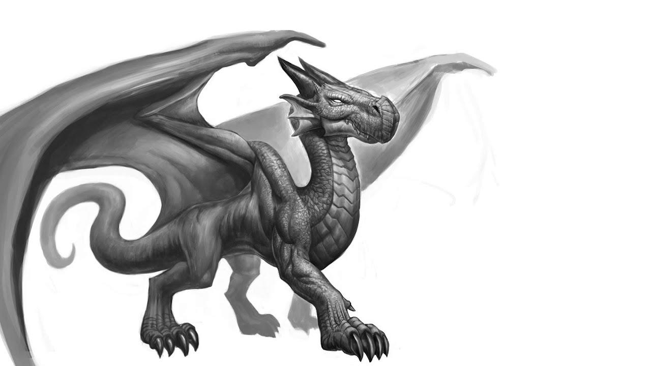 How To Draw Dragons 2 Dragon Anatomy Youtube