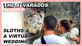 Sloths & A Virtual Wedding - The Alvarados