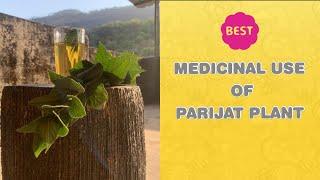 Medicinal Use Of Parijat Plant || आयुर्वेद || Gardening With Jaymala