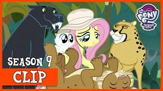 Fluttershy Joins Caballeron on an Expedition to Tenochtitlan (Daring Doubt) | MLP: FiM [HD]