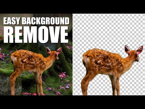 Photoshop Tutorial 2020 | The EASY Background Remover Hidden Tips In Photoshop