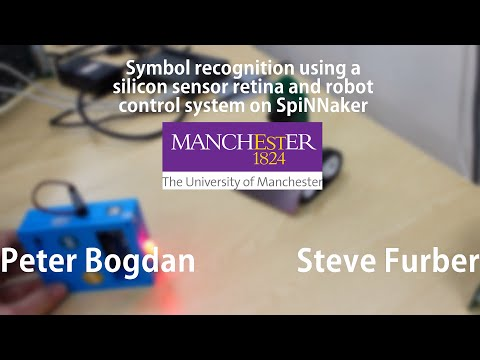 Neuromorphic computer vision and robot control system