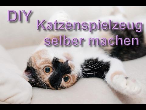 Katzenspielzeug selber machen  Katzenspielzeuge selbst basteln  DIY aus Haushaltsartikel bauen