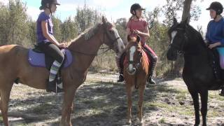 Repeat youtube video The Saddle Club, Episode Two, Season One