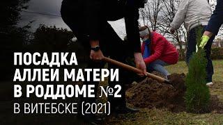 Посадка аллеи матери в роддоме №2 в Витебске (2021)