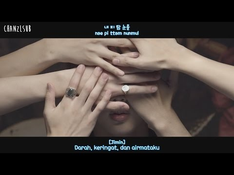 BTS - Blood Sweat & Tears (Indo Sub) [ChanZLsub]