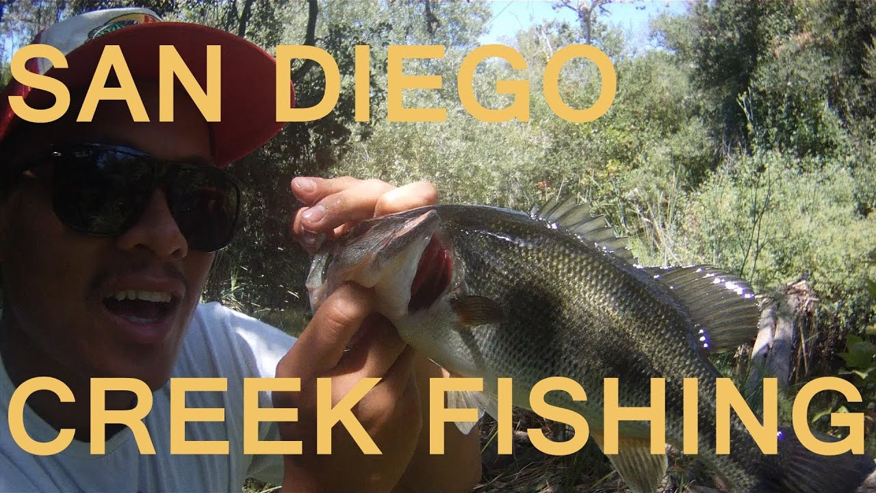San diego creek fishing for bass youtube for Bass fishing san diego