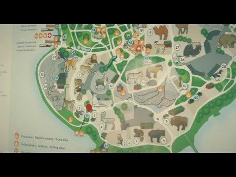 Korkeasaari / Helsinki Zoo